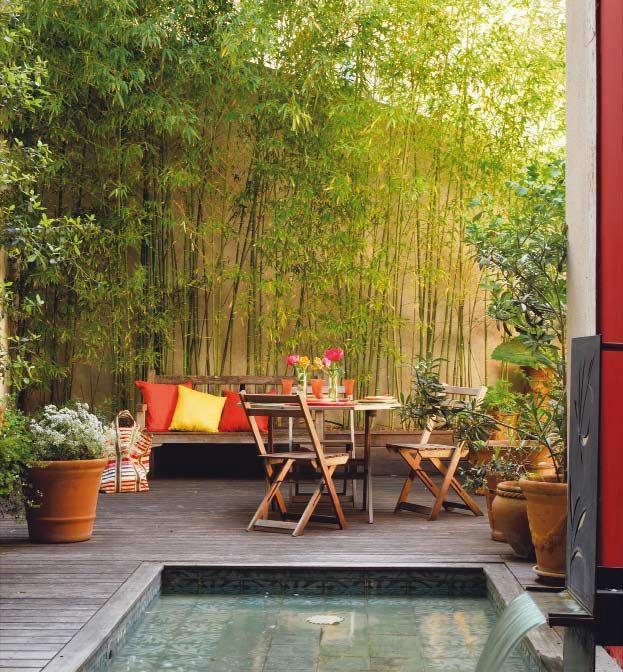 J 39 veux du soleil dans ma d co synergie d co for Quelle plante autour d une piscine
