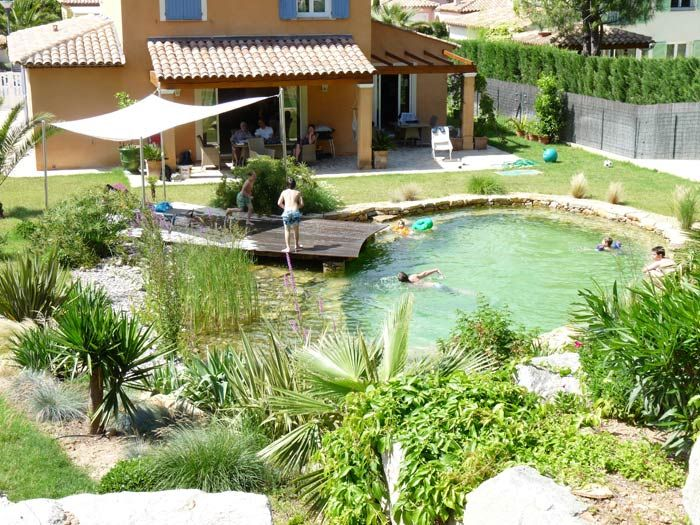 Focus envie de piscine synergie d co for Piscine naturelle prix