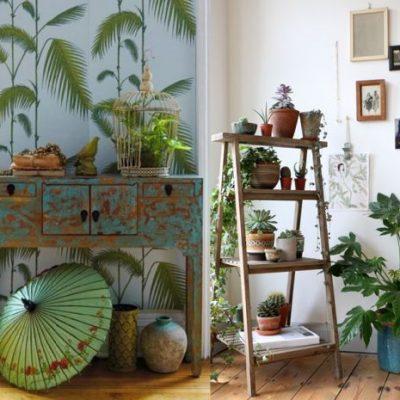 Tropicalisent votre! Les plantes hissées sur une étagères participent à la déco, nichées entre quelques touches de bleu canard (encore et toujours).
