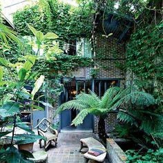 Un jardin tropical sous vos fenêtres! Choisissez des plantes adaptées à notre climat, mais jouez sur l'opulence: il vous faut des plantes au feuillage persistant, qui égayeront la vue même en hiver. Un patio abrité du vent serait parfait...