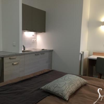 Un studio, lit déplié: canapé rapide à transformer en lit.