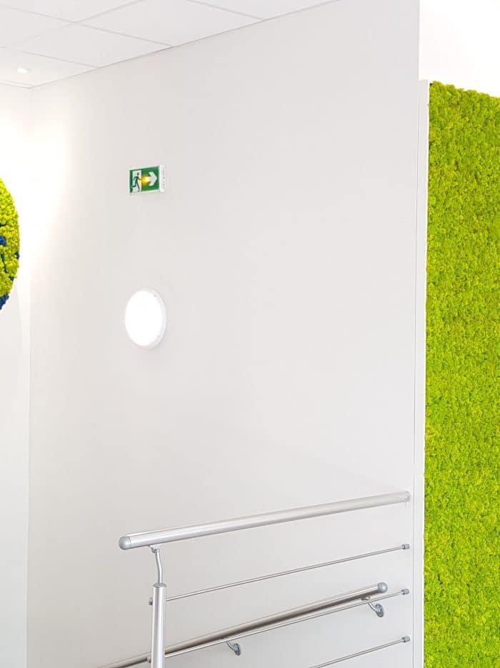 logo mousse décoration et agencement bureaux décoratrice UFDI Synergie Déco
